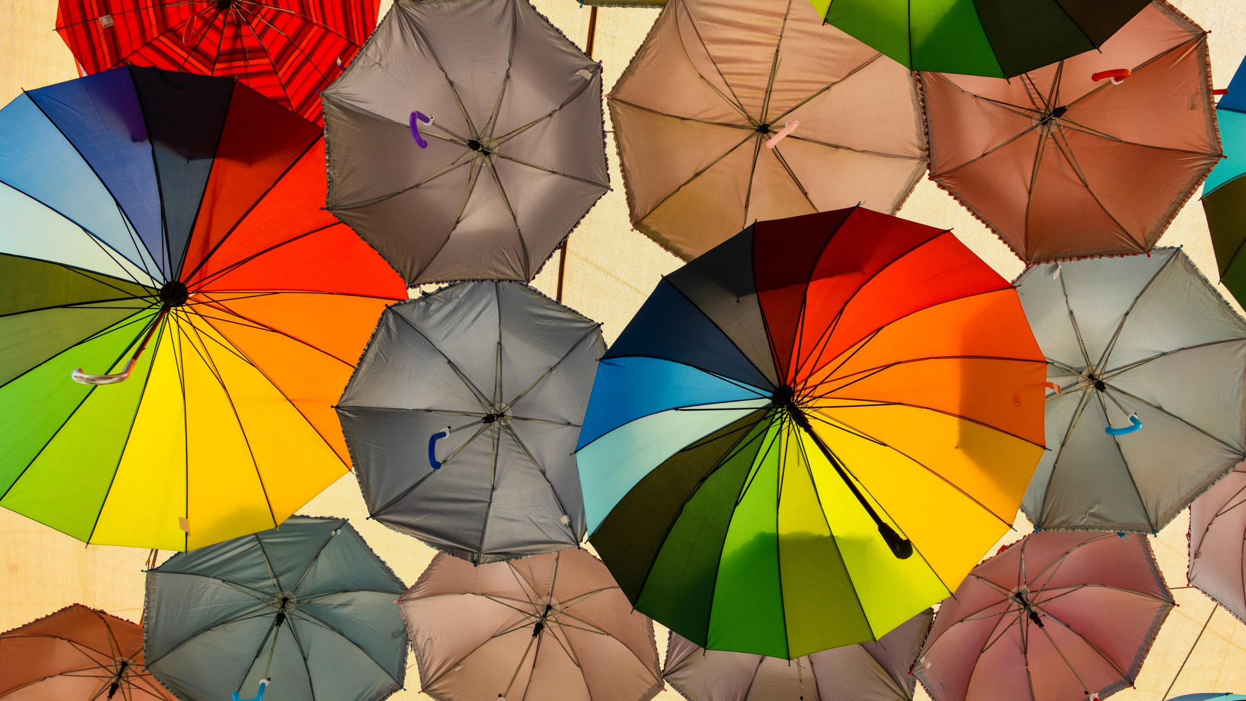 Grāmatvedības «jumta» likuma jaunais likumprojekts– apzinātas un neapzinātas sekas