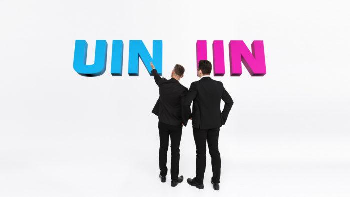 UIN vai IIN – kurš piemērotāks individuālajiem uzņēmējiem?